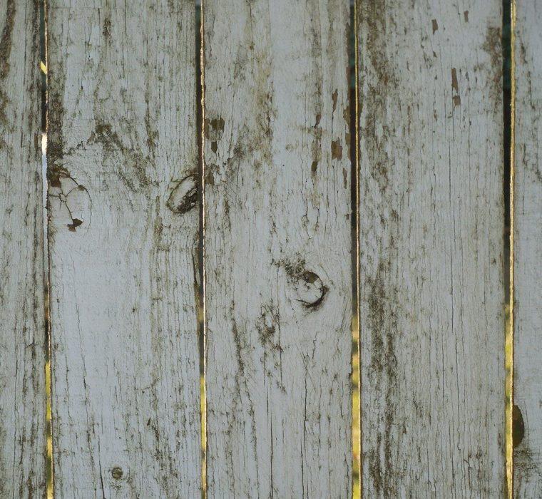 Humidity and Mold