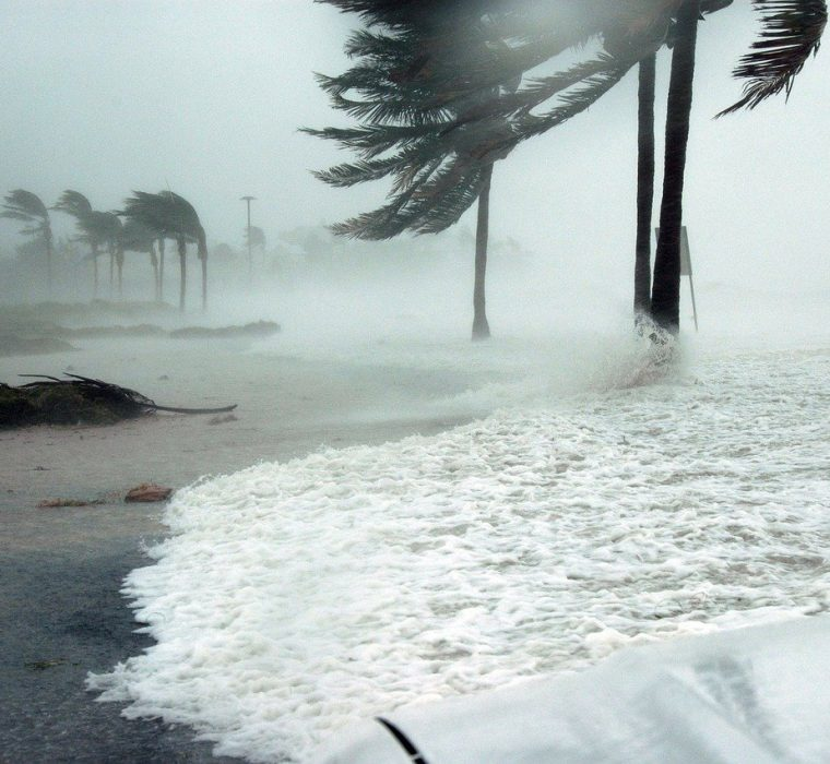 Hurricane Preparedness: 8 Tips To Define Your Plan