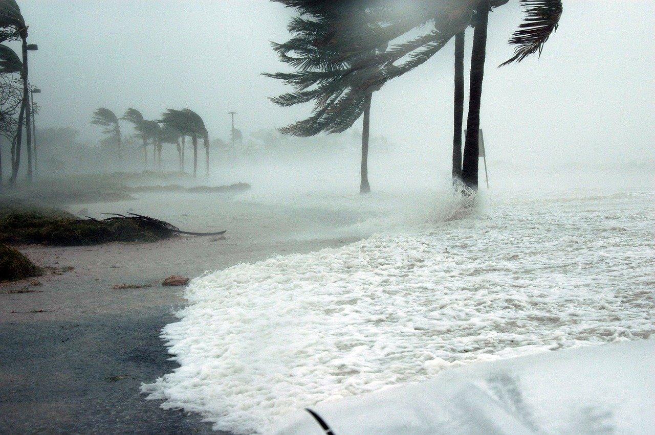 Hurricane Preparedness: 8 Tips To Define Your Plan